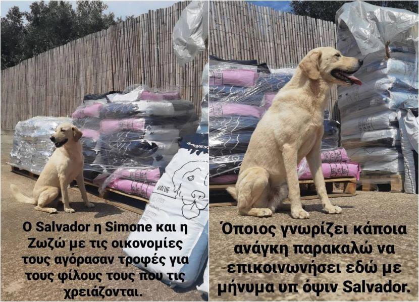 Λεωνίδας Κουτσόπουλος - Salvador